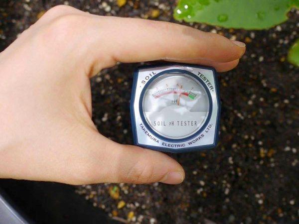 Bút đo pH đất Takemura DM15