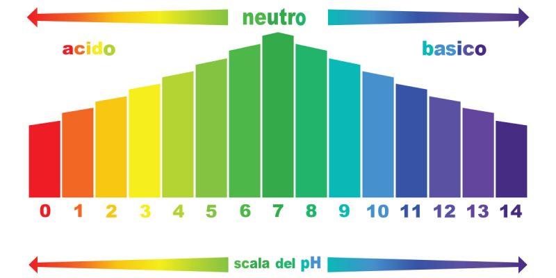 Thang đo pH đất